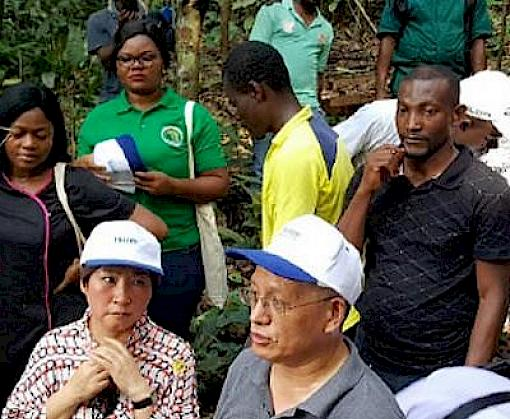Chinese timber industry representatives visit Cameroon