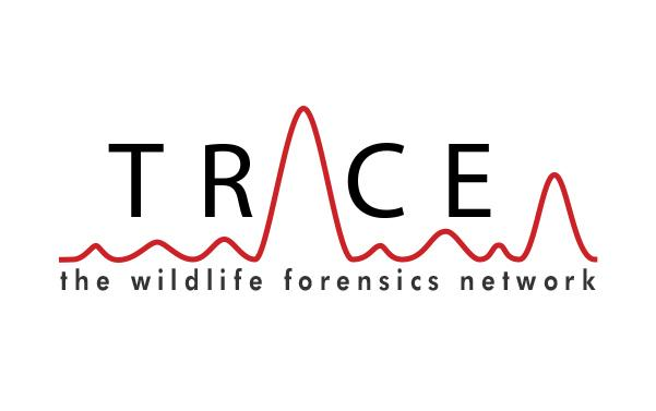 the TRACE Network