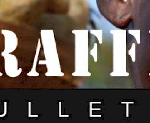 Wildlife crime, CITES CoP17, Malagasy Rosewood and more – in the latest TRAFFIC Bulletin