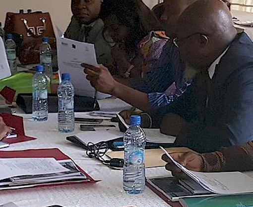 Capacity building of key actors involved in wildlife law enforcement in the DRC
