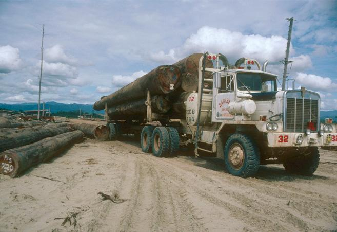 Truck bringing logs to a dumping ground in Sabah, Malaysia © Sylvia Jane Yorath / WWF