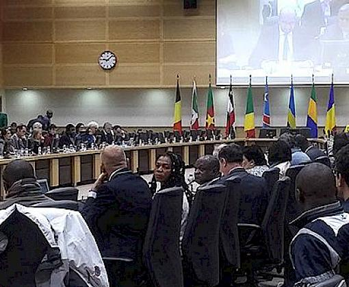 Congo Basin: Partners speak of need for collaboration to safeguard forest ecosystems