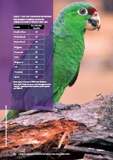 Traffic impact study report pdf