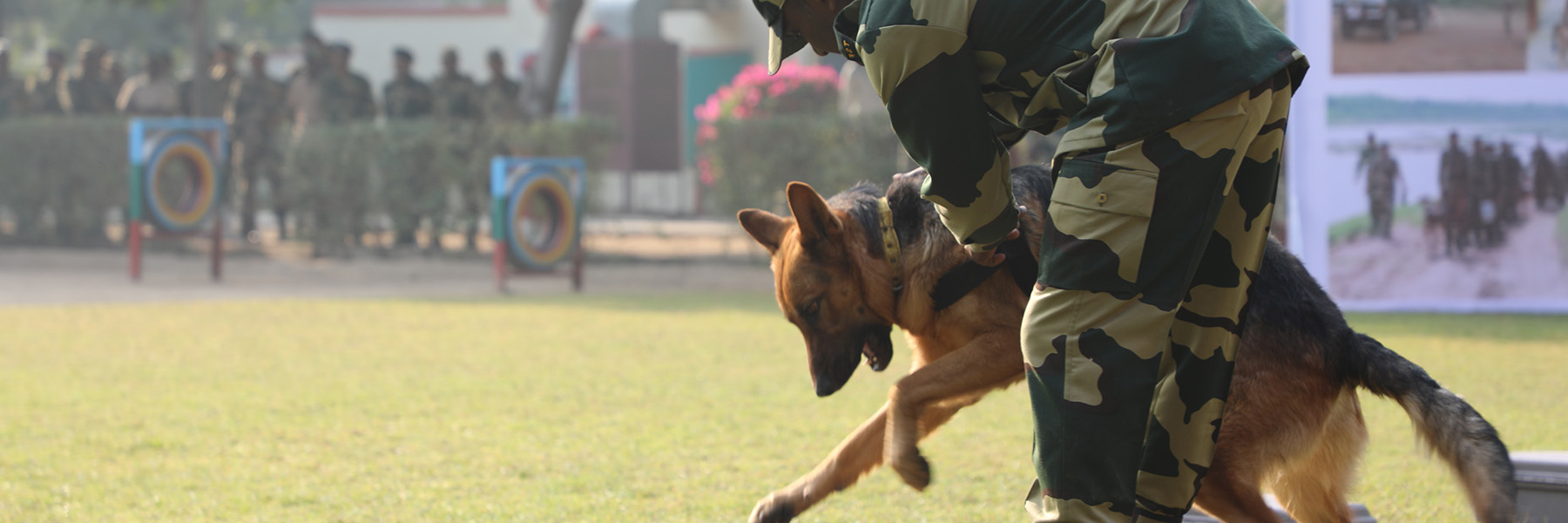 A wildlife sniffer dog undergoes training in India