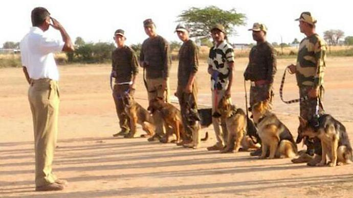 Sniffer dog squads at a passing out ceremony © TRAFFIC