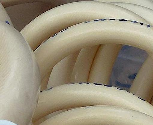 TRAFFIC kicks off new consumer initiative against ivory consumption in Viet Nam