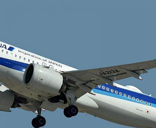 All Nippon Airways and Narita International Airport initiative to combat wildlife trafficking