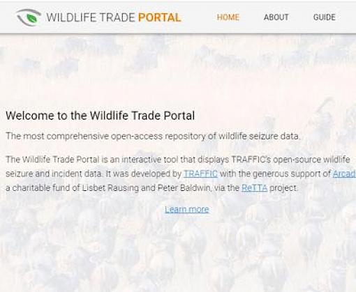 New tool to track wildlife trade