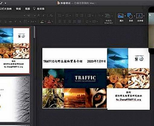 Countering illegal plant trade: TRAFFIC hosts virtual training for staff of internet giant Douyin.com
