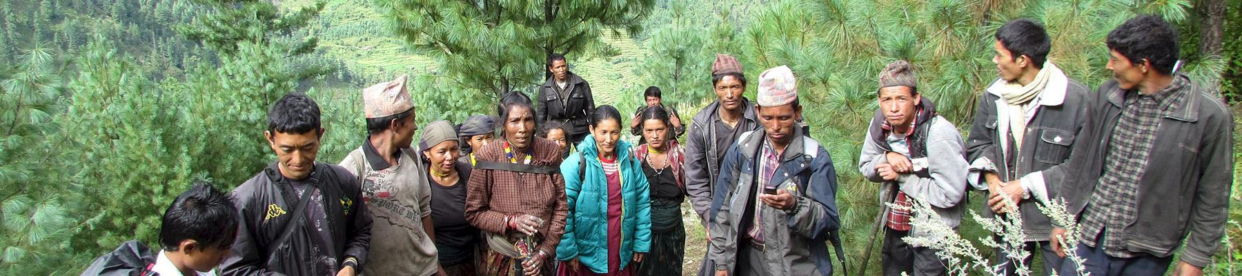 Jatamansi harvesters in the Alpine forests of Nepal. Photo: ANSAB
