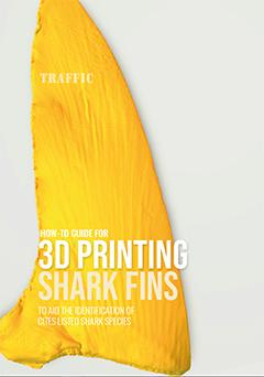 THE WORLD'S FIRST EVER3D SHARK FIN SCAN LIBRARY