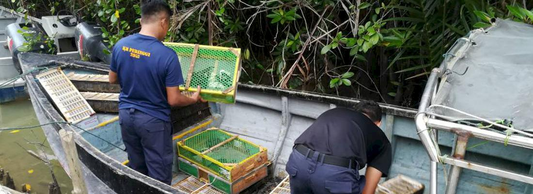 Officers recovering the drowned birds in Melaka, Malaysia © Malaysian Maritime Enforcement Agency