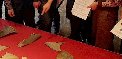 Chinese enforcement agencies enhance their shark fin identification skills