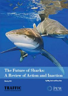 The Future of Sharks: A Review of Action and Inaction
