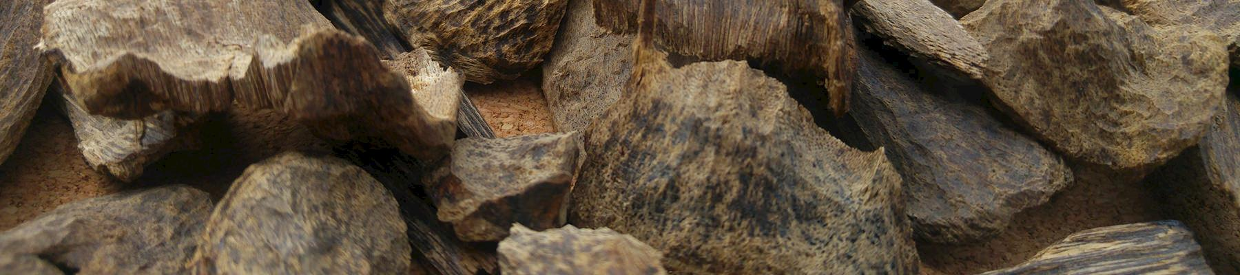 Pieces of agarwood ready for sale © Agarwood for Life / CC Generic 2.0