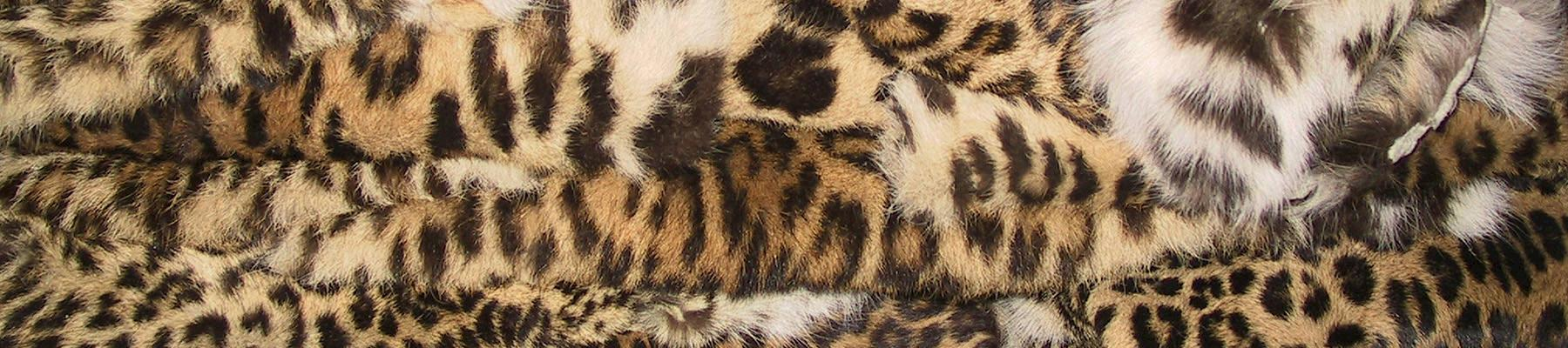 Confisctaed leopard skins, one example of an ongoing trade in China © Mark Atkinson / WWF