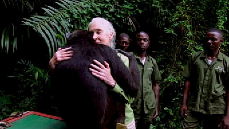 Jane Goodall on why there is still hope