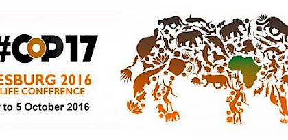 Positive outcomes from global wildlife trade conference, but much work needed to halt unsustainable and illegal trade