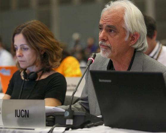 Tom Milliken from TRAFFIC at CITES CoP17