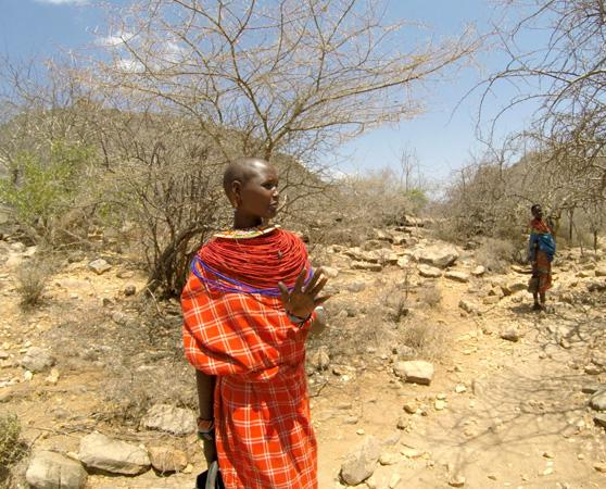 FairWild helped run a project in Kenya working to help local frankincense collectors use sustainable practices and reap the rewards from responsible harvesting © Ackroyd & Harvey / Conflicted Seeds