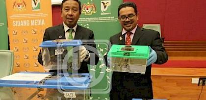 Malaysia seizes over 680 wildlife and parts in operation against wildlife cybercrime