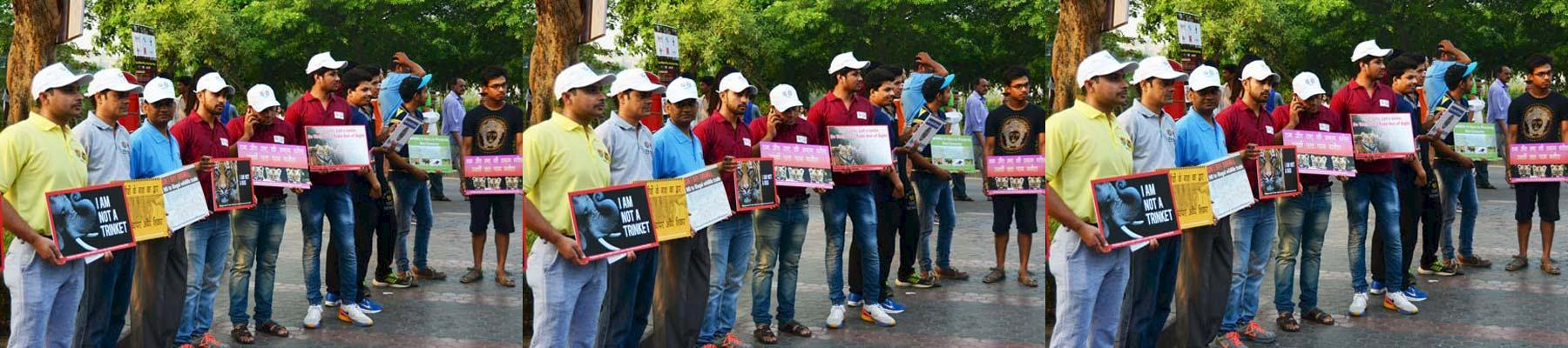 Volunteers and supporters holding placards with messages related to wildlife conservation © WWF India