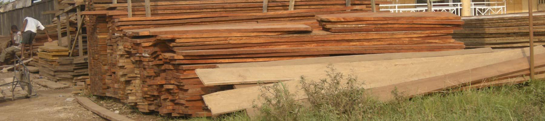 African timber awaiting export to Asia © Roland Melisch / TRAFFIC