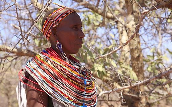 The Samburu in Kenya collect wild frankincense resin, widely used throughout beauty and healthcare © Akroyd & Harvey / Conflicted Seeds